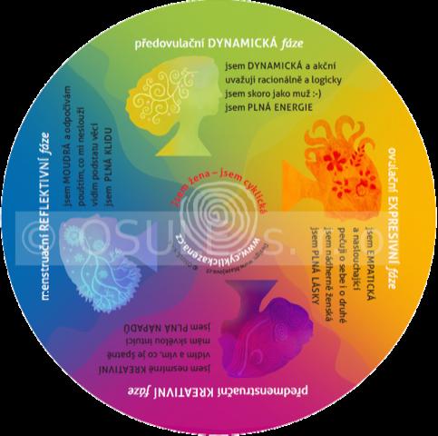 Cyklický magnet