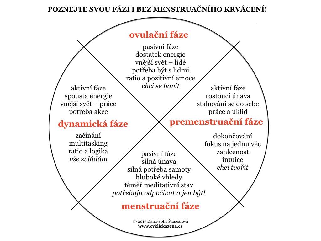 Jaké jsou jednotlivé fáze cyklu a jak je poznáte? To vám prozradí tohle cyklické kolečko...